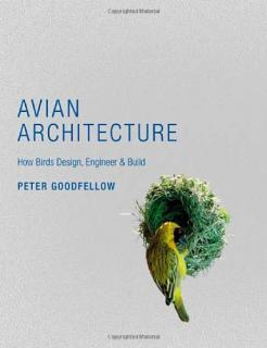 Avian Architecture: How Birds Design, Engineer & Build - Peter Goodfellow