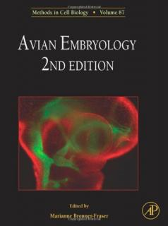 Avian Embryology - Marianne Bronner-Fraser