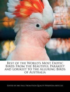 Best of the World's Most Exotic Birds - Abe Hall