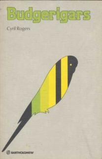 Budgerigars - Cyril H. Rogers