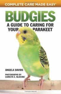 Budgies: A Guide to Caring for Your Parakeet - Angela Davids