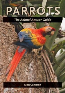 Parrots: The Animal Answer Guide  - Matt Cameron